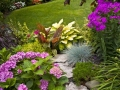 Colourful garden idea
