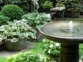 Let us design you a potted garden